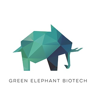 Logo green elephant